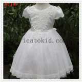 Embrodiery Lace Equin Tops Tulle Flower Girls Dress for Girls