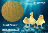 Feed Grade Animal Yeast Protein Powder for Chicken Fish