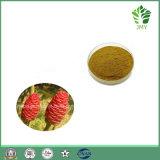 Pure Natural Zingiber Zerumbone Smith Extract, 10: 1, 20: 1, Zerumbone 99%
