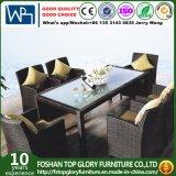 Rattan Outdoor Garden Furniture Set Patio Dining Table Chair Set (TG-1030)