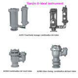 Dual Body Combination Air Release Valve for Waste Water
