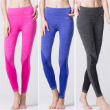(OEM Factory) Dry Fit Custom Yoga Pants Women Wholesale Women Leggings Tights