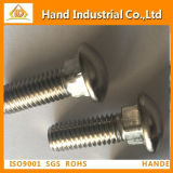 Stainless Steel Fastener Square Neck Carriage Bolt