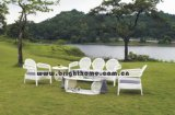 Rattan Furniture (Golf Series) (BP-856)