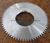 Alloyed Steel Spur Gear
