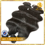 6A+ Virgin Remy Brazilian Human Hair Extension (TFH-NL0529)