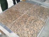 Giallo Cecilia Dark Granite Countertops/Kitchen Tops/Vanity Tops