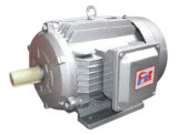 Ie2 Y2 Three-Phase Induction Motor