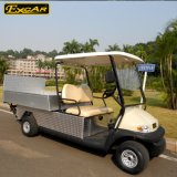 White 2 Seats Electric Golf Cart Wiith Cargo