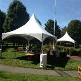2015 Hot Sales Beautiful Aluminium Shelter Frame Tent