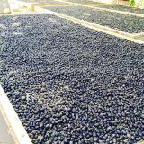 Medlar Lycium Barbarum Wolfberry Dried Fruit Black Goji