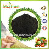 Hot Sale Organic Seaweed Extract Fertilizer for Agriculture