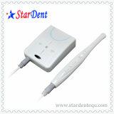 Dental USB/VGA Intra-Oral Camera of Equipment