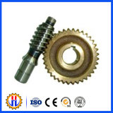 Chinese Manufacturer Steel/Brass AC Motor Worm Gear and Worm Wheel