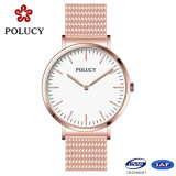 Fashion Watch Quartz Movt Stainless Steel Case with Mesh Band