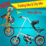Cheap Bicycle Made in China Factory (NY-FB001)