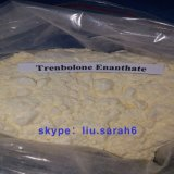 Trenbolone Enanthate Muscle Gaining Steroids Yellow Powder
