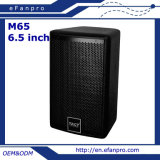 Hot Sale 6.5 Inch Woofer Little Professional Conference Room Meeting Speaker System for Hospital (M65 - TACT)
