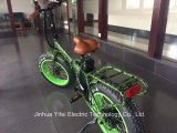 20 Inch Lithium-Ion Battery Fat Tire Electric Bike Ebike for All Terrain