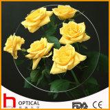 1.499 Single Vision 60mm Optical Lens Hc