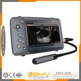 Bestscan S6 Waterproof Handheld Veterinary Ultrasound Scanner for Large Animals