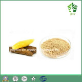 100% Natural Anti-Oxidant Yacon Extract Powder 4: 1~20: 1,   Fructooligosaccharide