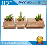 Custom Logo Decorative Wooden Planter Pot Small Flower Pots