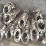 SUS304 Ss304 AISI304 304 Stainless Steel Wire
