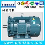 Iron Cast Three Phase Electric Compressor Motor (B3 37kw IP5)