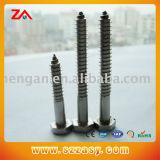 DIN7981 Series M6 Stainless Steel Screw