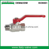 Male-Female Brass Forged Ball Valve (AV1013)