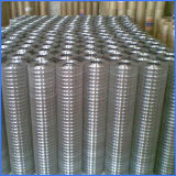 Low Carbon Steel Welded Wire Mesh Electrowelding Net