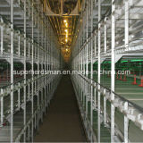 Hot Sale Poultry Equipment Chicken Cage Feeding System