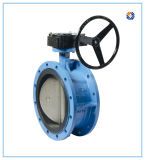 Cast Iron Worm Gear Operated Butterfly Valve