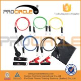 Luxury 11 PCS Resistance Tube Kit with Monster Band