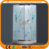 Patterned Glass Glass Shower Door (ADL-8048)