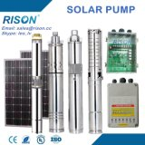 China DC Submersible Solar Pump for Irrigation and Swimming Pool (5 Years Warranty)