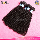 100% Raw Unprocessed Indian Braiding Hair Curly Kinky