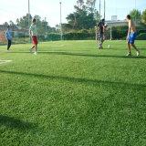 Best Quality Cheap Soccer Sport Artificial Turf