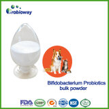 OEM/ODM Cats and Dogs Bifidobacterium Probiotics Feed Additive Produce B Vitamins