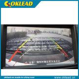 Rear Hitch Car Accessories Display Rack (okl238)