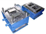 2 Cavities Preservation Box Mould