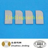 Hard Metal Tungsten Carbide for Tamping Tool for Railroad Tampers