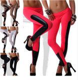 2015 New Designed Women Faux Leather Trim Stretch Leggings 23689