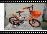 New China Bicycles/Kids Bike/Children Bike 12/14/16/20 Inch