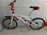 20′′ BMX Bike with Disk Brake and Spoke Wheel (AOK-BMX010)