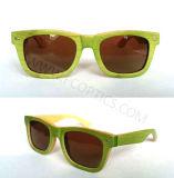 Bamboo Eyewear Frame in Polarized Lens