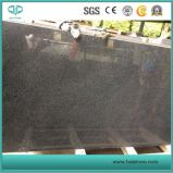 Good Quality Wholesale Polished Black/White/Grey/Yellow/Dark G654 Granite for Slab/Tile/Kerbstone/Paving Stone