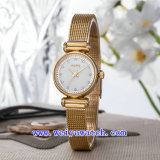 Stainless Steel Watch Customize Casual Wrist Watches (WY-017A)