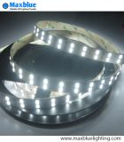 4000k Daylight 12VDC Samsung SMD5630 LED Strip